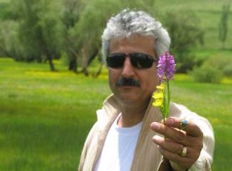 Farshid Abdi